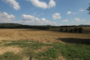 Agricultural lands for sale in Tuscany -Rif.Az215